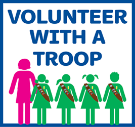 Volunteer with a troop.